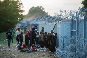 Illegális bevándorlás - Horgos