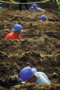 Sírásó verseny a debreceni Köztemetőben