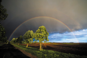 Rainbow near Hajdúböszörmény